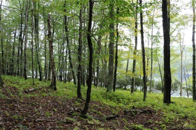 Lot 39 Kenoza Trail, Kenoza Lake, NY 12750 (MLS #4854907) :: Mark Boyland Real Estate Team