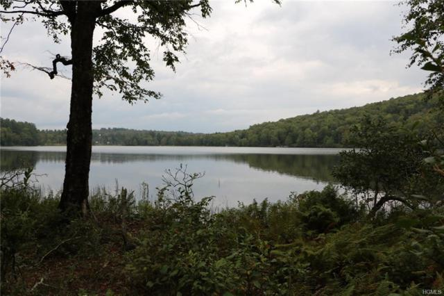 Lot 40 Kenoza Trail, Kenoza Lake, NY 12750 (MLS #4854914) :: Mark Boyland Real Estate Team
