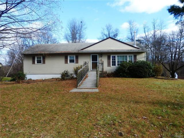 123 Coach Lane, Newburgh, NY 12550 (MLS #4854921) :: The McGovern Caplicki Team