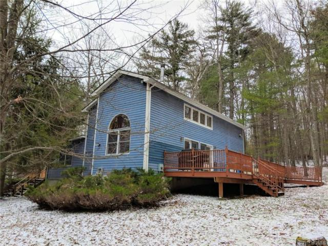3 Marko Drive, Eldred, NY 12732 (MLS #4854985) :: Stevens Realty Group