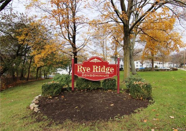99 Avon Circle A, Rye Brook, NY 10573 (MLS #4855051) :: Mark Boyland Real Estate Team
