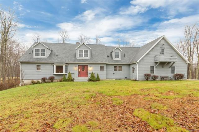 845 Cold Spring Road, Clinton Corners, NY 12514 (MLS #4855105) :: William Raveis Baer & McIntosh