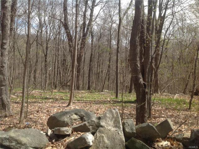 495 Stormville Mountain Road, Stormville, NY 12582 (MLS #4855210) :: Mark Seiden Real Estate Team