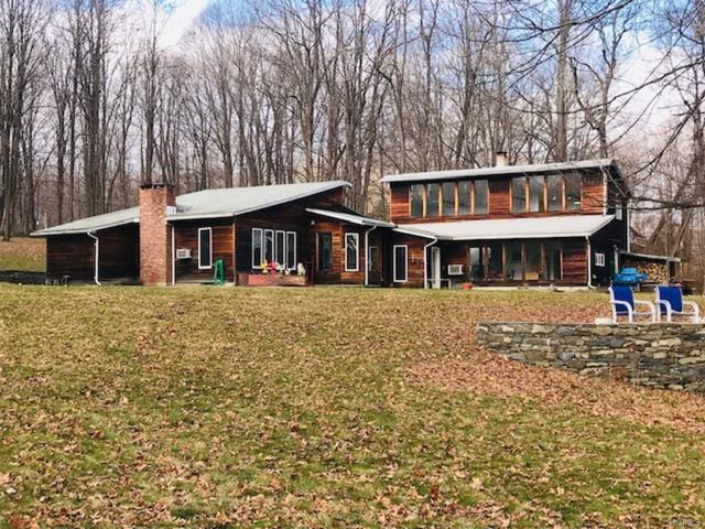 445 Plutarch Road, New Paltz, NY 12528 (MLS #4855218) :: Shares of New York