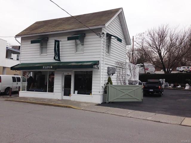 10 Dakin Avenue, Mount Kisco, NY 10549 (MLS #4855219) :: Mark Boyland Real Estate Team