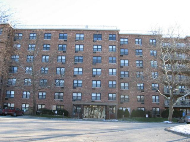 81 Charter Circle 1P, Ossining, NY 10562 (MLS #4855294) :: The McGovern Caplicki Team