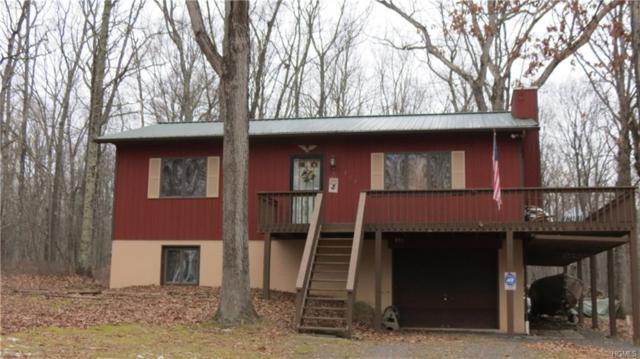 197 Riverview Drive, Lackawaxen, PA 18435 (MLS #4855430) :: Mark Boyland Real Estate Team