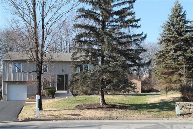 15 Plymouth Rock Court, Washingtonville, NY 10992 (MLS #4855501) :: Mark Boyland Real Estate Team