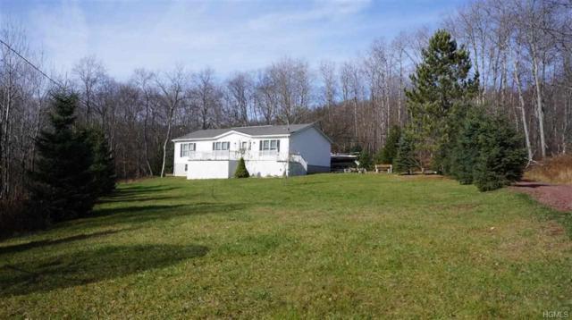 655 Debruce Road, Livingston Manor, NY 12758 (MLS #4855728) :: Mark Boyland Real Estate Team