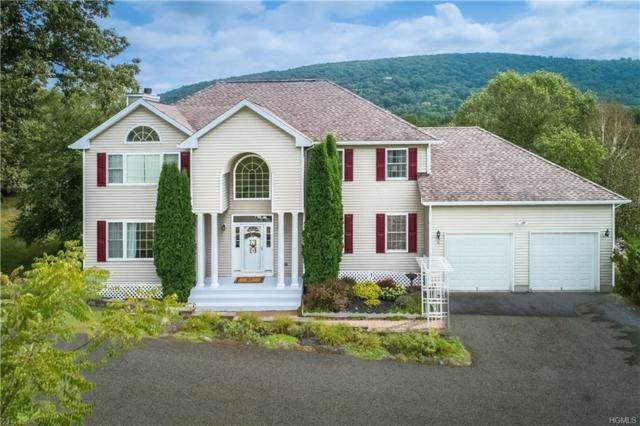 100 Old Pawling Road, Pawling, NY 12564 (MLS #4855943) :: Shares of New York