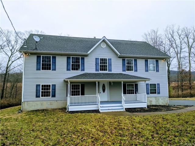 180 Penaluna Road, Monroe, NY 10950 (MLS #4856031) :: William Raveis Baer & McIntosh