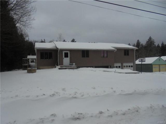 28 Cooley Road, Parksville, NY 12768 (MLS #4856309) :: Mark Boyland Real Estate Team