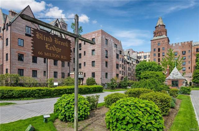 66 Milton Road J11, Rye, NY 10580 (MLS #4856687) :: Mark Boyland Real Estate Team