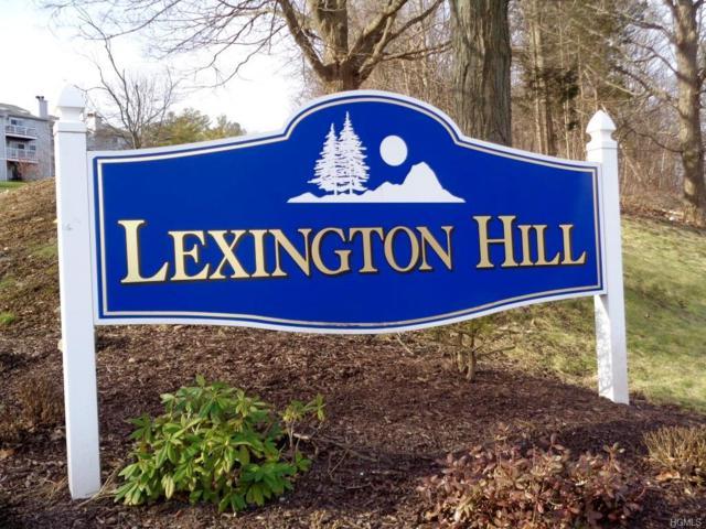 2 Lexington Hill #7, Harriman, NY 10926 (MLS #4856913) :: Mark Seiden Real Estate Team