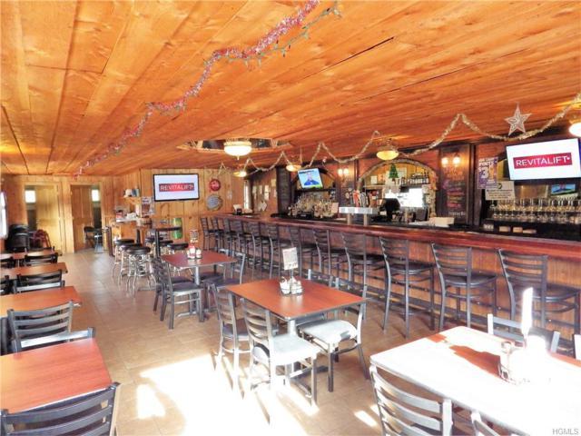 90 Forman Road, Cochecton, NY 12726 (MLS #4900134) :: Mark Boyland Real Estate Team