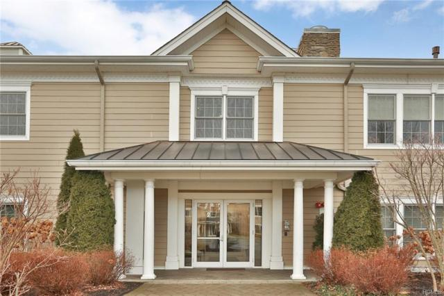 2201 Fred Ill Jr Court, Pearl River, NY 10965 (MLS #4900561) :: Mark Boyland Real Estate Team