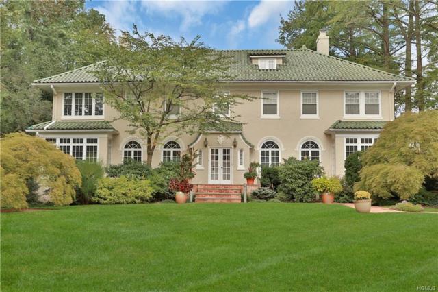 224 Broadview Avenue, New Rochelle, NY 10804 (MLS #4900677) :: Mark Boyland Real Estate Team