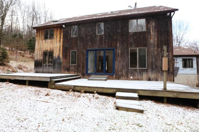 55 John George Road, Grahamsville, NY 12740 (MLS #4900840) :: Mark Boyland Real Estate Team