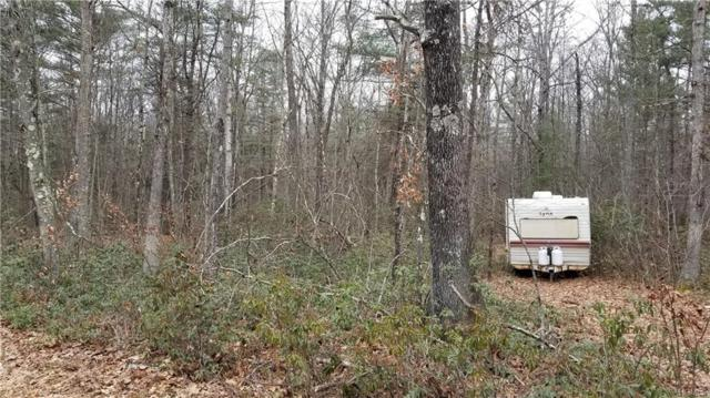 Lot 14 Perry Pond Road, Narrowsburg, NY 12764 (MLS #4901039) :: William Raveis Legends Realty Group