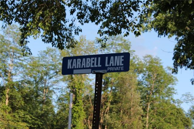 Karabell Lane - Lot 3, Rhinebeck, NY 12572 (MLS #4901113) :: The Anthony G Team