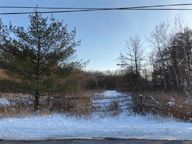 Red Mills Road, Pine Bush, NY 12566 (MLS #4901264) :: The McGovern Caplicki Team