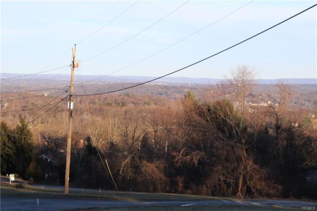 Carter Avenue, Newburgh, NY 12550 (MLS #4901461) :: Mark Boyland Real Estate Team