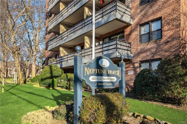 640 Pelham Road 4G, New Rochelle, NY 10805 (MLS #4901479) :: Mark Boyland Real Estate Team