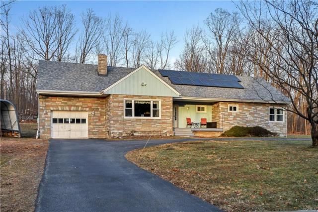 2594 County Route 1, Port Jervis, NY 12771 (MLS #4901489) :: Mark Boyland Real Estate Team