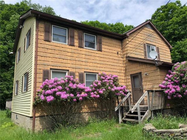 423 County Road 94, Hankins, NY 12741 (MLS #4901595) :: Shares of New York
