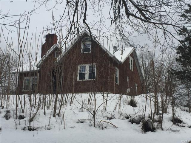 8252 Albany Post Road, Red Hook, NY 12571 (MLS #4901638) :: William Raveis Baer & McIntosh