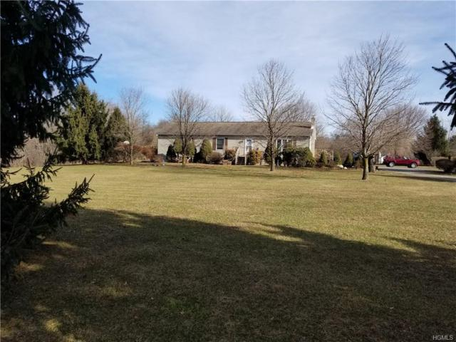 1585 Albany Post Road, Gardiner, NY 12525 (MLS #4901728) :: Stevens Realty Group