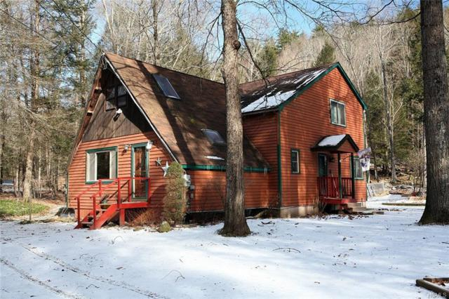 108 Cr 94, Hankins, NY 12741 (MLS #4901847) :: Mark Boyland Real Estate Team