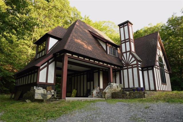 5 Looking Rocks Lane, Stormville, NY 12582 (MLS #4902039) :: Mark Boyland Real Estate Team