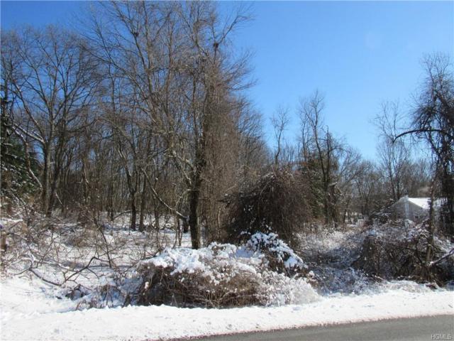 Andrews Road, Lagrangeville, NY 12540 (MLS #4902103) :: William Raveis Baer & McIntosh