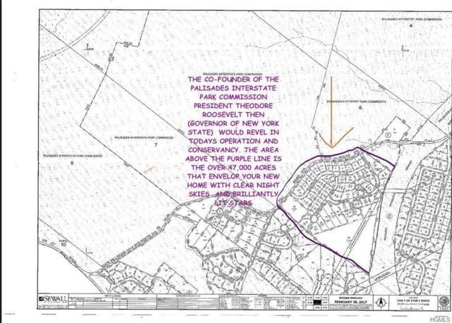 3 Sandyfields Lane, Stony Point, NY 10980 (MLS #4902119) :: William Raveis Baer & McIntosh
