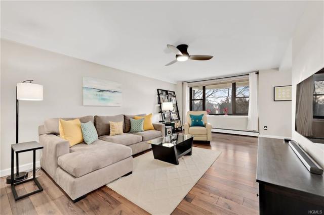 35 Stewart Place #206, Mount Kisco, NY 10549 (MLS #4902371) :: Mark Boyland Real Estate Team