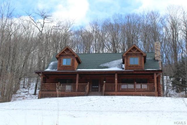 26 Wegman Road, Roscoe, NY 12776 (MLS #4902379) :: Mark Boyland Real Estate Team