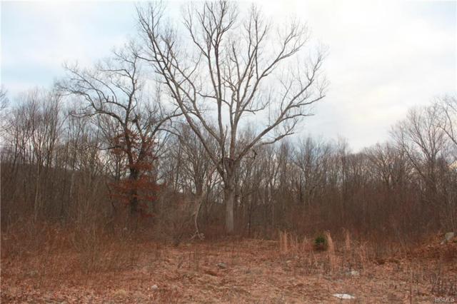 Ludingtonville Road, Holmes, NY 14477 (MLS #4902393) :: Mark Boyland Real Estate Team
