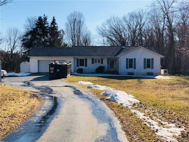 153 Bloomer Road, Lagrangeville, NY 12540 (MLS #4902504) :: Mark Seiden Real Estate Team