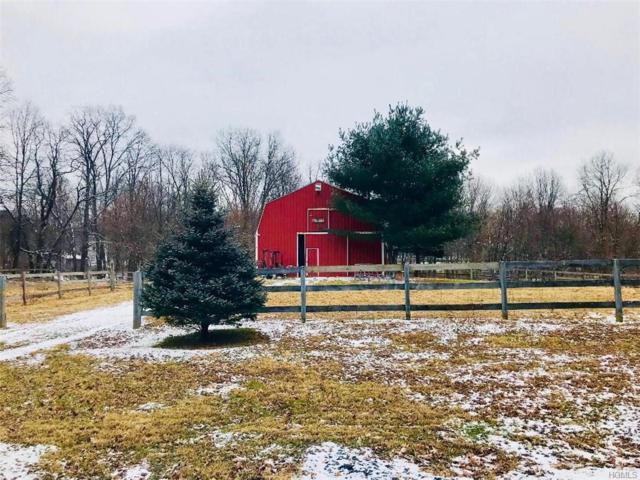 253 Strawridge Road, Wallkill, NY 12589 (MLS #4902536) :: Mark Boyland Real Estate Team