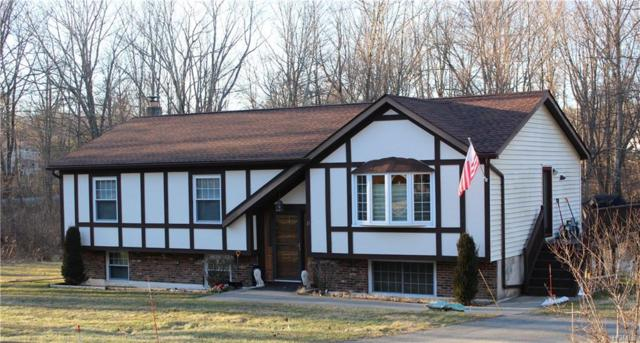 11 Tara Terrace, Greenville, NY 12771 (MLS #4902571) :: Mark Boyland Real Estate Team