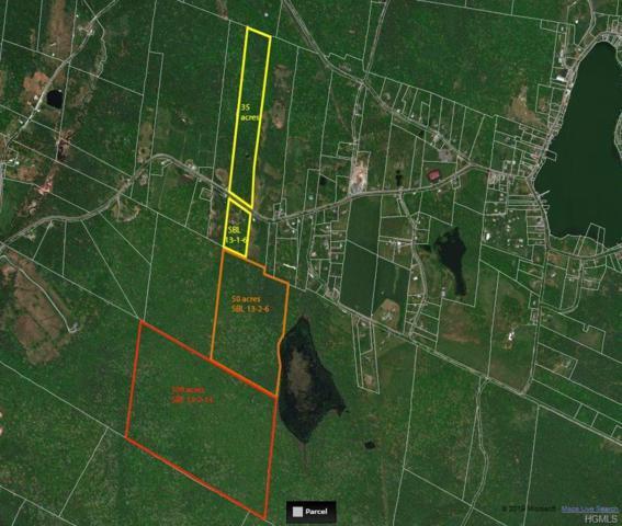 205 County Road 116, Cochecton, NY 12726 (MLS #4902583) :: Mark Boyland Real Estate Team