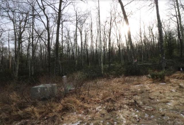 Pine Lake Drive, Wurtsboro, NY 12790 (MLS #4902649) :: Stevens Realty Group