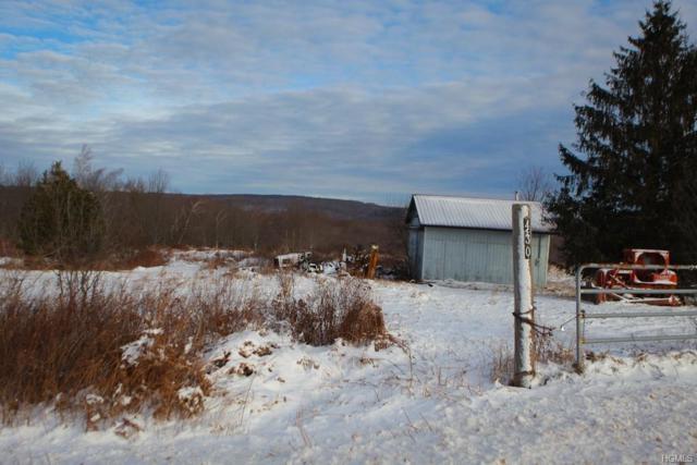430 Stump Pond Road, Jeffersonville, NY 12758 (MLS #4902800) :: Mark Boyland Real Estate Team