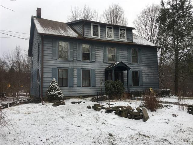 2328 Mountain Road, Otisville, NY 10963 (MLS #4902810) :: Shares of New York