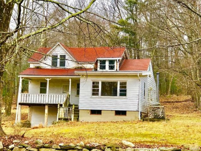 217 Church Road, Pine Bush, NY 12566 (MLS #4902986) :: The McGovern Caplicki Team