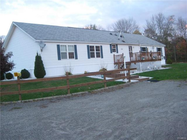 326 Briggs Highway, Ellenville, NY 12428 (MLS #4902988) :: Mark Seiden Real Estate Team