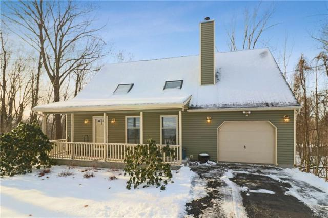 113 Brothers Road, Poughquag, NY 12570 (MLS #4903279) :: Shares of New York
