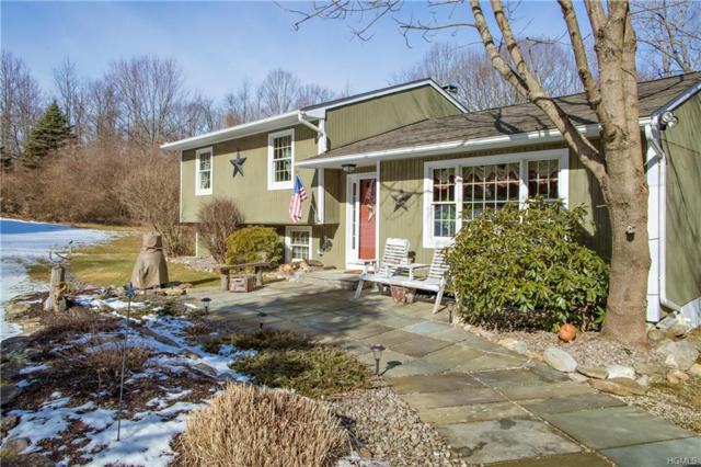 15 Millstream Court, Pawling, NY 12564 (MLS #4903339) :: William Raveis Baer & McIntosh