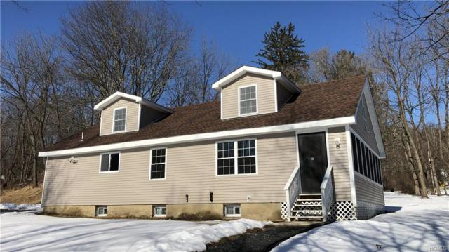 33 Marl Road, Pine Bush, NY 12566 (MLS #4903429) :: The McGovern Caplicki Team